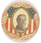 Taft Shield Colorful Celluloid