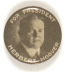 Hoover for President, Different Photo