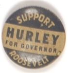 Franklin Roosevelt, Hurley for Governor
