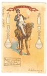 Anti Prohibition Camel Postcard