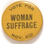 Vote for Woman Suffrage Nov. 6 New York Pin