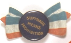 Suffrage Means Prohibition