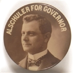 Alschuler for Governor, Illinois