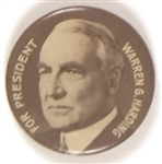 Harding for President Scarce Brown Celluloid