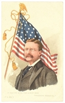 Theodore Roosevelt Flag Square Deal Postcard