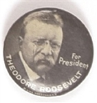 Theodore Roosevelt 1916 Rare Presidential Pin