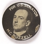 Buzzell for Governor of Maine