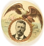 Theodore Roosevelt Eagle, Ships Pin