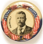 Theodore Roosevelt Eagle and Flag Celluloid