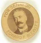 Edward Blewitt, Joe Biden's Great-Grandfather, for Senate