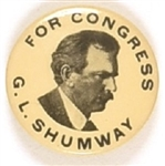 Shumway for Congress, Nebraska