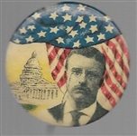 Theodore Roosevelt Capitol and Flag Pin