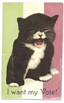 I Want My Vote Suffrage Cat Postcard