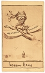 Theodore Roosevelt Soaring Home Postcard