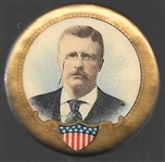 Theodore Roosevelt Shield Pin