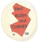 Elect Bush and Cheney New Jersey Celluloid