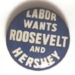 Labor Wants Roosevelt and Hershey Illinois Coattail