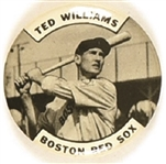 Ted Williams Boston Red Sox