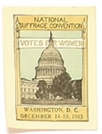 National Suffrage Convention 1915 Stamp
